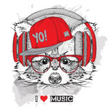 Raccoon in glasses and headphones. Vector illustration. Royalty Free Stock Photo