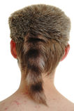Raccoon Hat Royalty Free Stock Photography