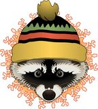 Raccoon with hat stock illustration