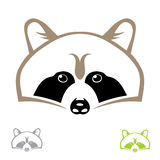 Raccoon head Royalty Free Stock Photo