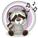 Raccoon with headphones Royalty Free Stock Photography