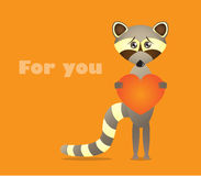 Raccoon with heart Stock Photo