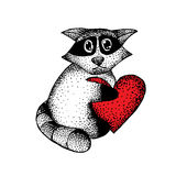 Raccoon-heart. Drawing black pen raccoon with a heart in his hands Royalty Free Stock Images