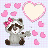 Raccoon with heart frame Stock Images