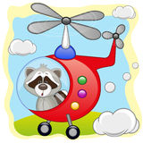 Raccoon in helicopter Royalty Free Stock Photo