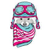 Raccoon in a helmet. Cute raccoon vector. Pilot. Motorcyclist. Royalty Free Stock Photos