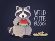 Raccoon holds a watermelon. Vector clip art Royalty Free Stock Images