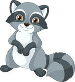 Raccoon. Image cute raccoon on a white background vector illustration