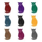 raccoon Les animaux choisissent l'icône en Web noir d'illustration d'actions de symbole de vecteur de style Images stock