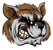 Raccoon mascot character vector illustration
