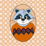 Raccoon in orange jersey Royalty Free Stock Images