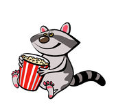 Vector raccoon with popcorn. Picture with raccoon sitting with popcorn Royalty Free Stock Image