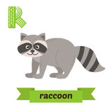 raccoon R-Buchstabe Nette Kindertieralphabet im Vektor Funn Lizenzfreie Stockfotografie