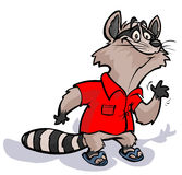 Raccoon in red shirt. Stock Photography