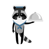Raccoon sailor with dish Royalty Free Stock Images