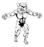 Raccoon scary sports mascot Stock Image