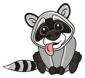 Raccoon sits head bent forward. Raccoon sits sticking his tongue out and tilting the head forward royalty free illustration