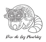 Raccoon sugar Mexican skulls. Vector illustration Royalty Free Stock Photos