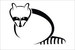 Raccoon symbol Royalty Free Stock Image