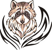 Raccoon tattoo Royalty Free Stock Photos