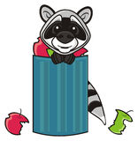 Raccoon and trash can Stock Photography