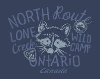 Raccoon wild camp. Artwork for kids wear in custom colors stock illustration