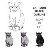 raccoon Zwierzęta przerzedżą ikonę w kreskówka stylu symbolu zapasu ilustraci wektorowej sieci Obrazy Stock