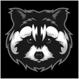 Raccoons head logo for sport club or team. Animal mascot logotype. Template. Vector illustration Royalty Free Stock Photos