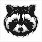 Raccoons head logo for sport club or team. Animal mascot logotype. Template. Vector illustration Royalty Free Stock Images