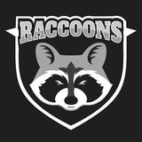 Raccoons head logo for sport club or team. Animal mascot logotype. Template. Vector illustration. Flat style Royalty Free Stock Photo