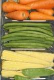 Raccord en caoutchouc, haricot et maïs Photographie stock libre de droits