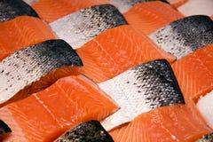 Raccordi di color salmone Immagini Stock Libere da Diritti