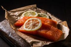 Raccordi di color salmone grezzi Fotografia Stock