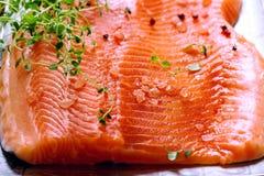 Raccordi di color salmone grezzi Fotografia Stock Libera da Diritti