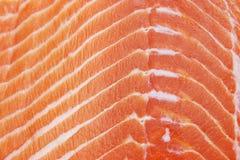 Raccordo di color salmone Fotografia Stock Libera da Diritti