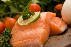 Raccordo di color salmone fotografia stock