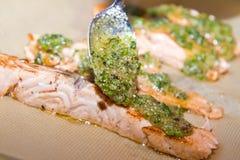 Raccordo di color salmone Immagini Stock Libere da Diritti