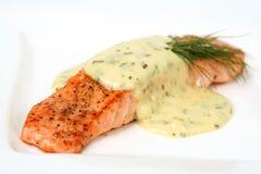 Raccordo di color salmone Immagine Stock Libera da Diritti