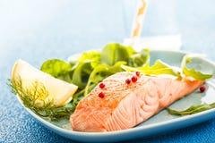 Raccordo di color salmone arrostito o cucinato al forno Fotografia Stock Libera da Diritti