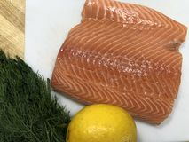 Raccordo di color salmone con il limone e l'aneto immagine stock