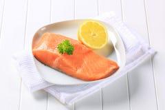 Raccordo di color salmone fresco Fotografia Stock