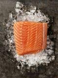 Raccordo di color salmone su ghiaccio Immagine Stock