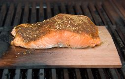 Raccordo di color salmone sul fumo della plancia del cedro che cucina sul BBQ Fotografia Stock