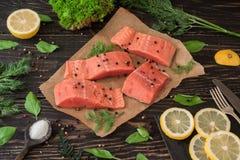 Raccordo di color salmone sulla carta pergamena Fotografia Stock Libera da Diritti