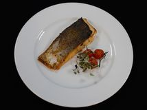 Raccordo fritto del pesce di color salmone immagini stock libere da diritti