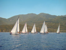 Race along the shore Royalty Free Stock Photo