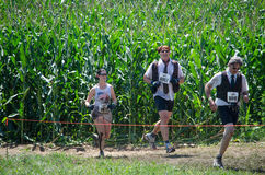Race for business. A woman and two business men in tie and vest race out of the corn at the mudathlon in northwest Indiana Royalty Free Stock Photo