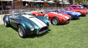 Race Cars. Group of Cobras were part of a display on the Geelong water front where the Quarter Miles Sprints were held over the weekend of 1-2 December 2012 Stock Image
