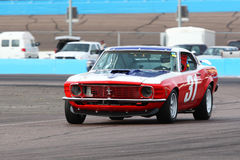 Race cars at Phoenix International Raceway Royalty Free Stock Photography
