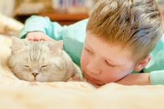 Race de chat les Anglais Shorthair avec un garçon Photos stock